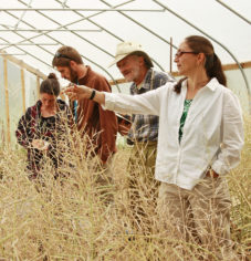 jodi-leading-seed-production-hoophouse-tour