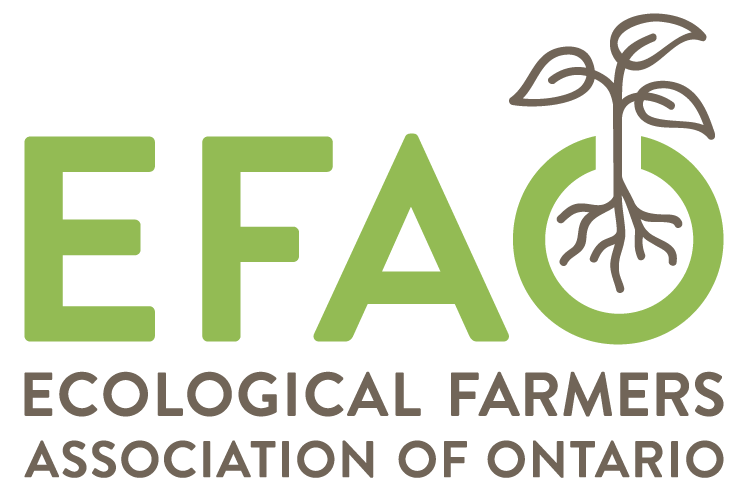EFAO Conference
