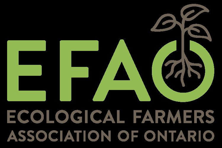 Logo EFAO Conference